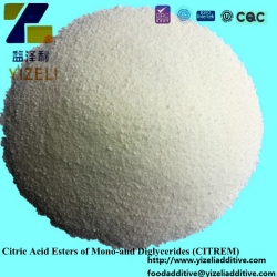Citric Acid Esters of Mono-and Diglycerides (CITREM)